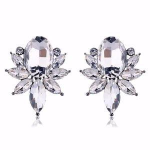 Opal White Crystal Drop Earrings